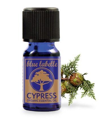 Organic cypress essential oil, cypress oil
